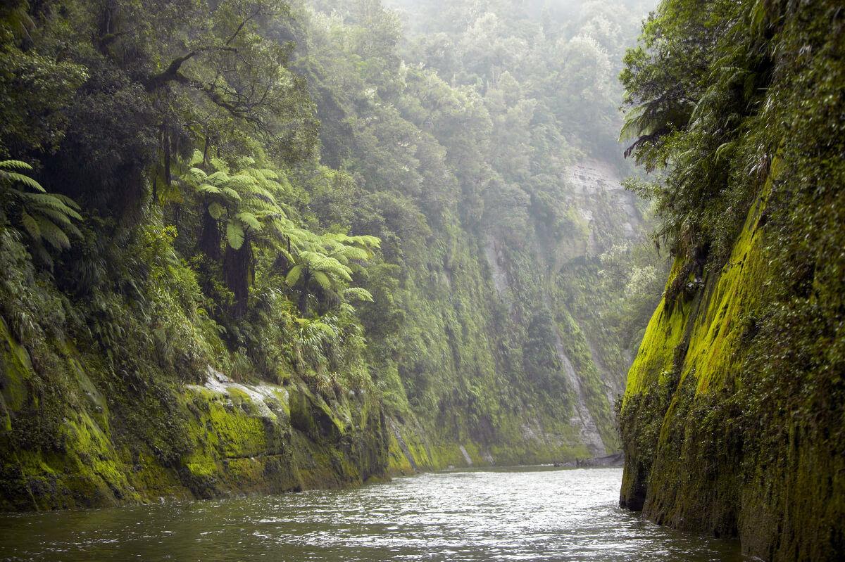 Whanaganui River
