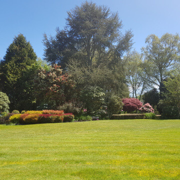 Features of the grounds